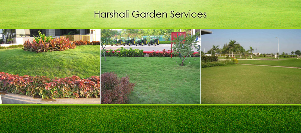 Harshali garden services pune service provider of for Garden consultant